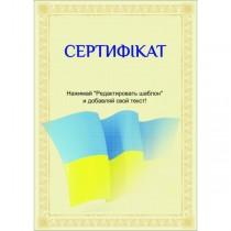 Сертифікат тип 10 українська мова