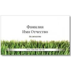 Визитки 100 шт флориста, озеленителя – Трава